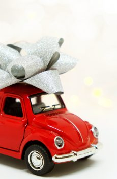 car buying coach