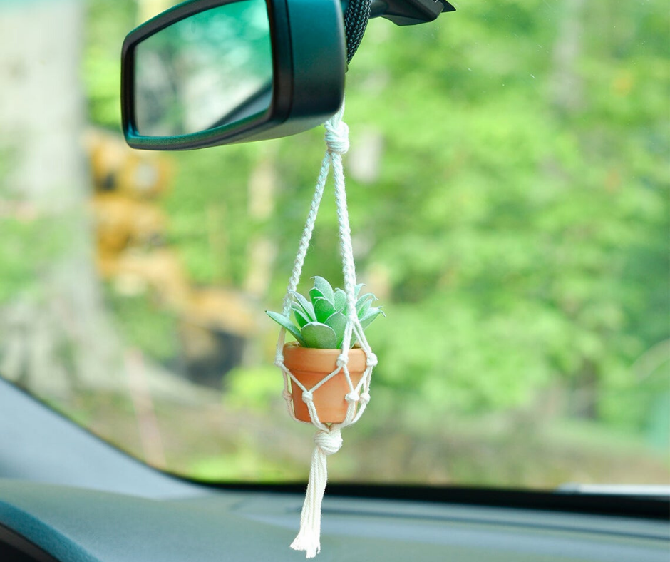 car plant hanger with succulent